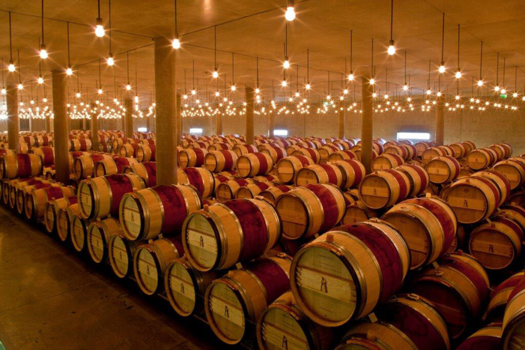 Инвестиции в вино: перспективы и трудности